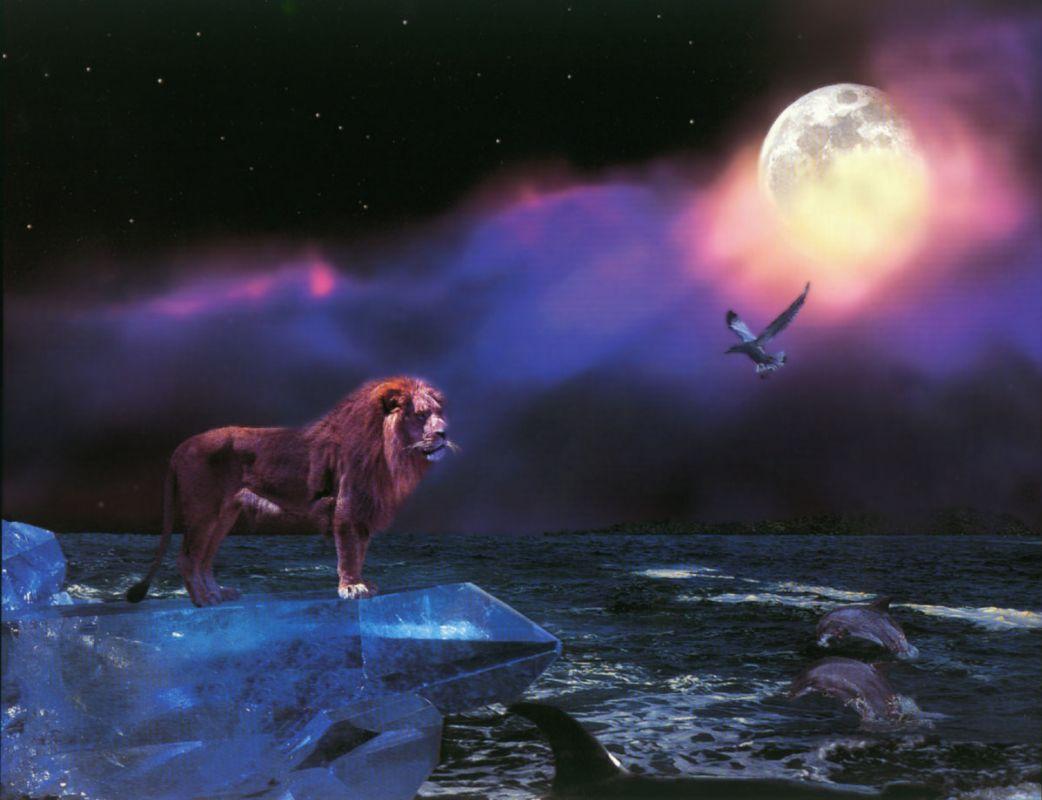 Совместимость Рыб и Льва женщин и мужчин