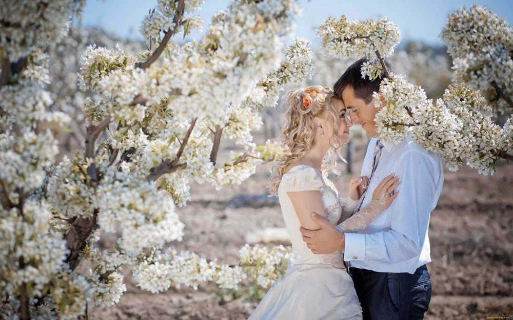 Почему нельзя жениться в мае правда или нет