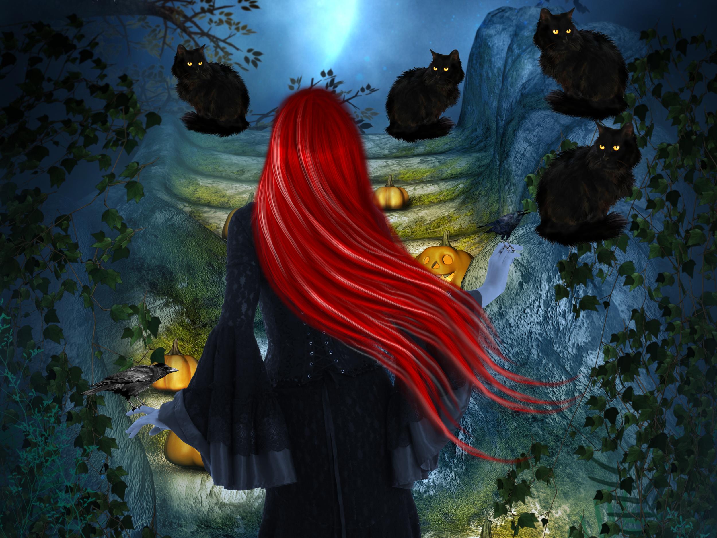 черная кошка плохая примета суеверие